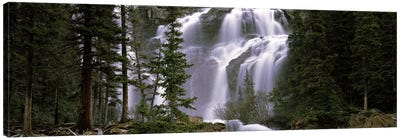 Waterfall in a forest, Banff, Alberta, Canada Canvas Art Print