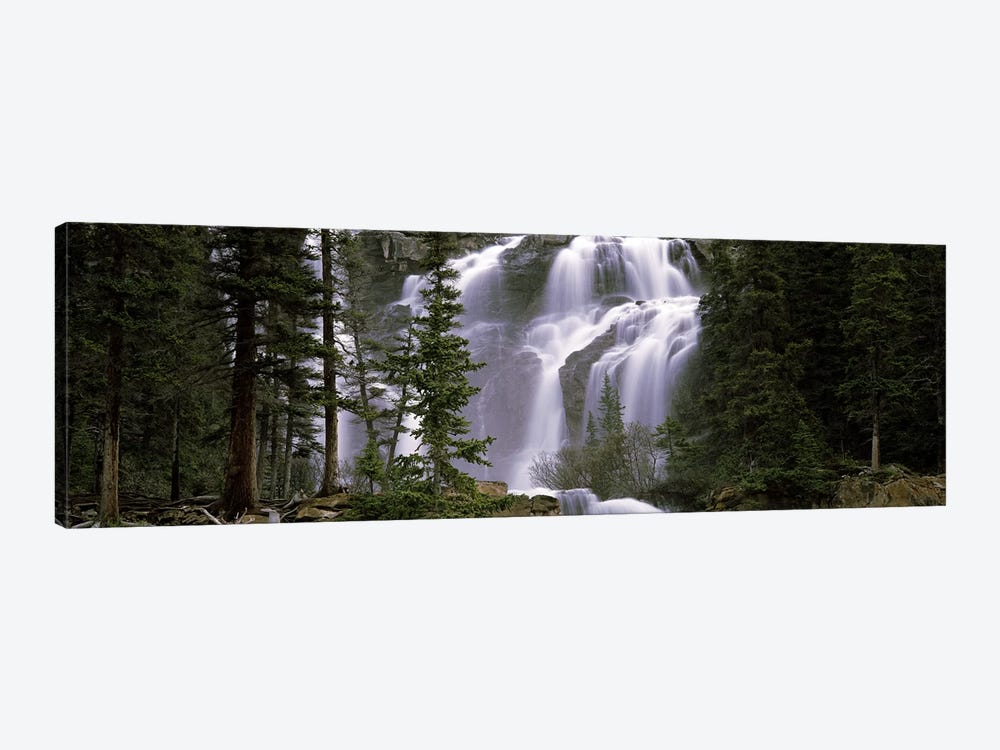 Waterfall in a forest, Banff, Alberta, Canada by Panoramic Images 1-piece Art Print