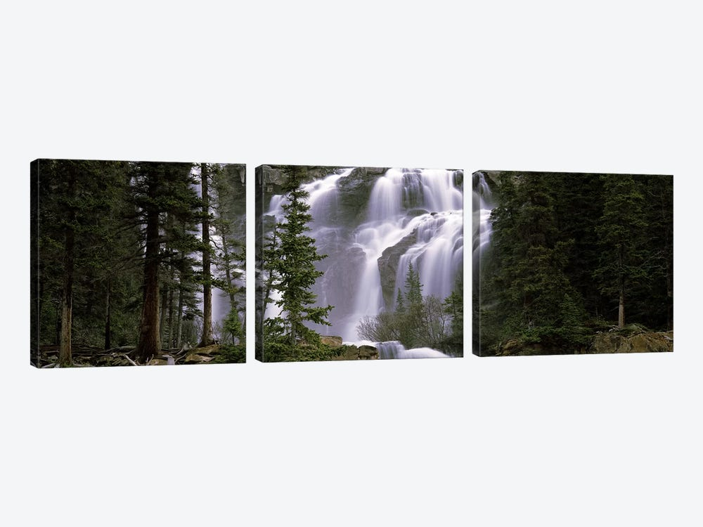 Waterfall in a forest, Banff, Alberta, Canada by Panoramic Images 3-piece Canvas Art Print