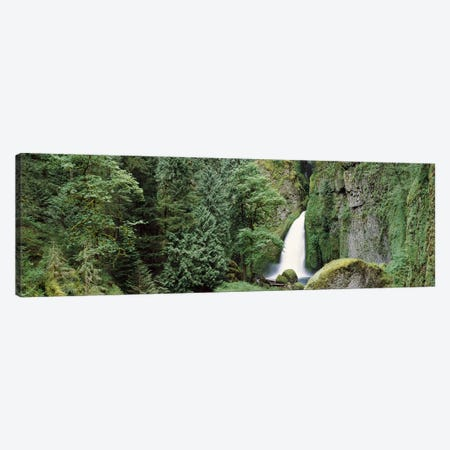 Waterfall in a forest, Columbia River Gorge, Oregon, USA Canvas Print #PIM7504} by Panoramic Images Canvas Print