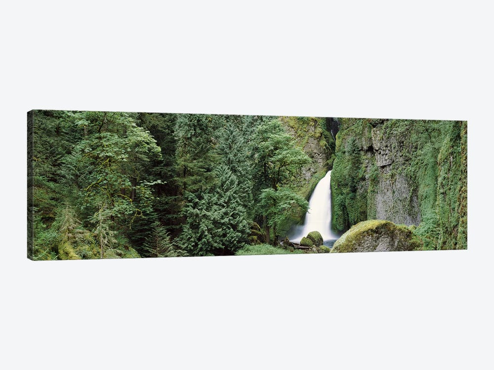 Waterfall in a forest, Columbia River Gorge, Oregon, USA by Panoramic Images 1-piece Canvas Artwork