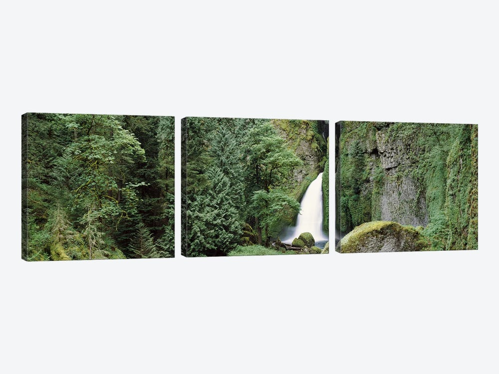 Waterfall in a forest, Columbia River Gorge, Oregon, USA by Panoramic Images 3-piece Canvas Art