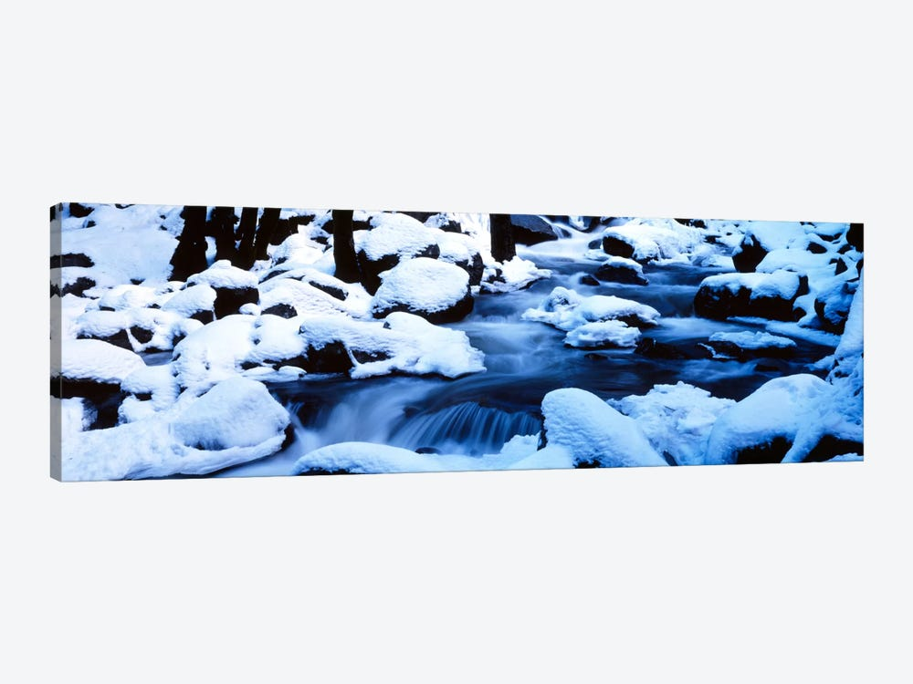 Winter Yosemite National Park CA by Panoramic Images 1-piece Art Print