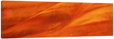 Orange & Tan Strata, Painted Hills Unit, John Day Fossil Beds National Monument, Oregon, USA Canvas Print #PIM7521