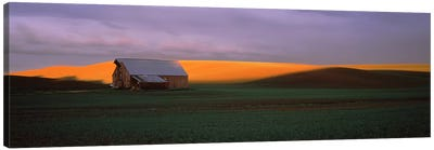 Barn in a field at sunset, Palouse, Whitman County, Washington State, USA Canvas Art Print