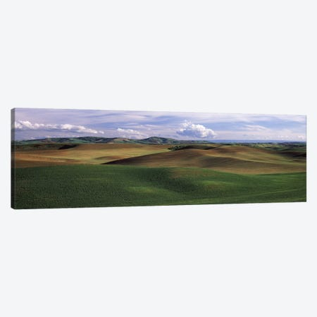 Clouds over a rolling landscape, Palouse, Whitman County, Washington State, USA Canvas Print #PIM7527} by Panoramic Images Art Print