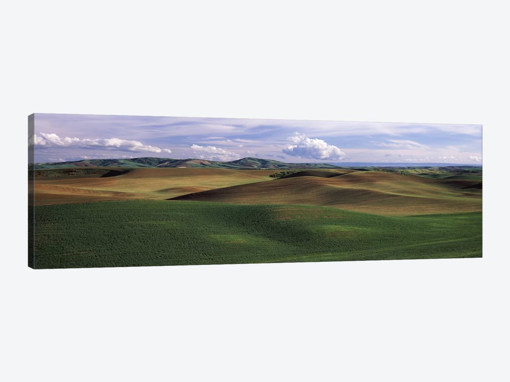 Clouds over a rolling landscape, Palouse, Whitman County, Washington State, USA by Panoramic Images 1-piece Canvas Art Print