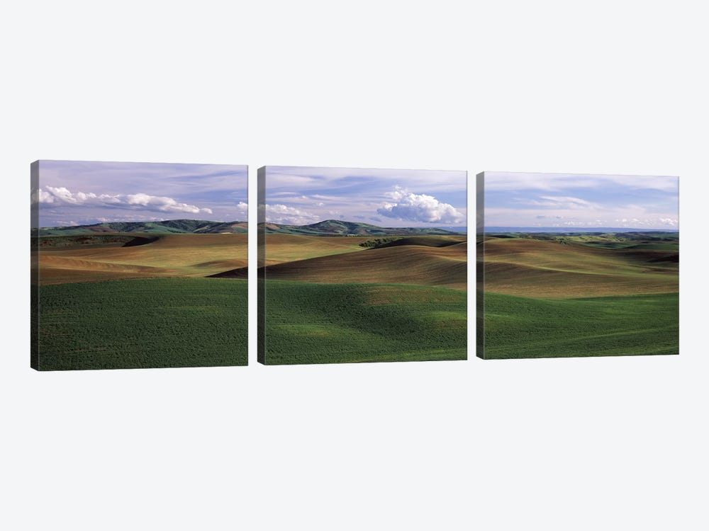 Clouds over a rolling landscape, Palouse, Whitman County, Washington State, USA by Panoramic Images 3-piece Art Print