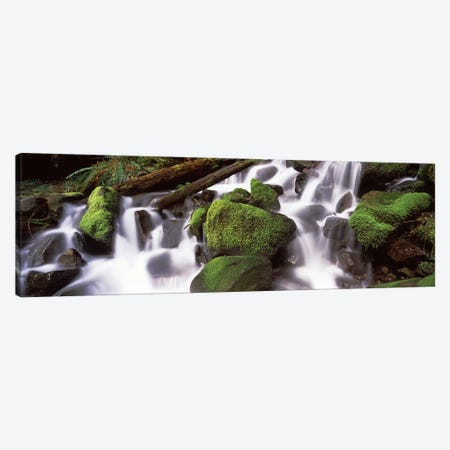 Cascading waterfall in a rainforest, Olympic National Park, Washington State, USA Canvas Print #PIM7533} by Panoramic Images Art Print