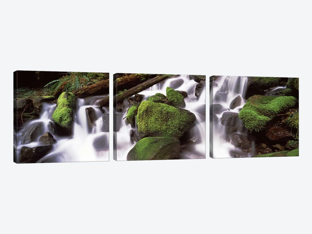 Cascading waterfall in a rainforest, Olympic National Park, Washington State, USA by Panoramic Images 3-piece Canvas Artwork