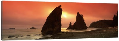 Silhouette of seastacks at sunset, Olympic National Park, Washington State, USA Canvas Art Print