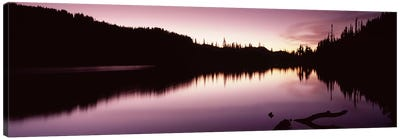 Reflection of trees in a lake, Mt Rainier, Pierce County, Washington State, USA #2 Canvas Art Print