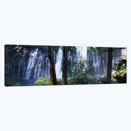 Burney Falls As Seen Through A Forest Landscape, McArthur-Burney Falls Memorial State Park, California, USA Canvas Print #PIM7549} by Panoramic Images Canvas Artwork