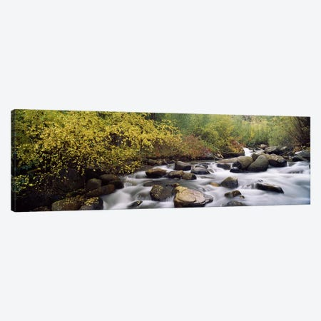 River passing through a forestInyo County, California, USA Canvas Print #PIM7551} by Panoramic Images Canvas Print