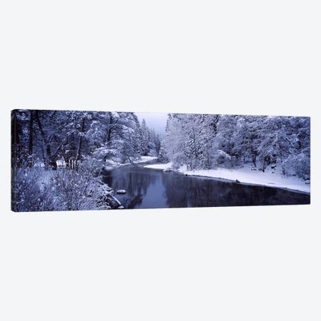 Snow covered trees along a river, Yosemite National Park, California, USA Canvas Print #PIM7555} by Panoramic Images Canvas Wall Art