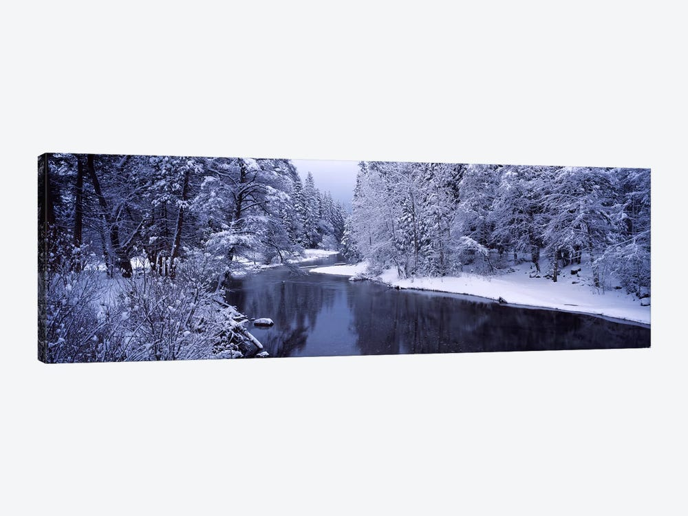 Snow covered trees along a river, Yosemite National Park, California, USA 1-piece Canvas Art