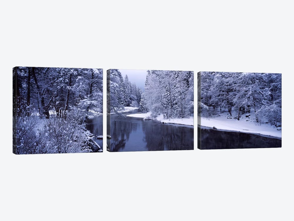 Snow covered trees along a river, Yosemite National Park, California, USA by Panoramic Images 3-piece Canvas Art