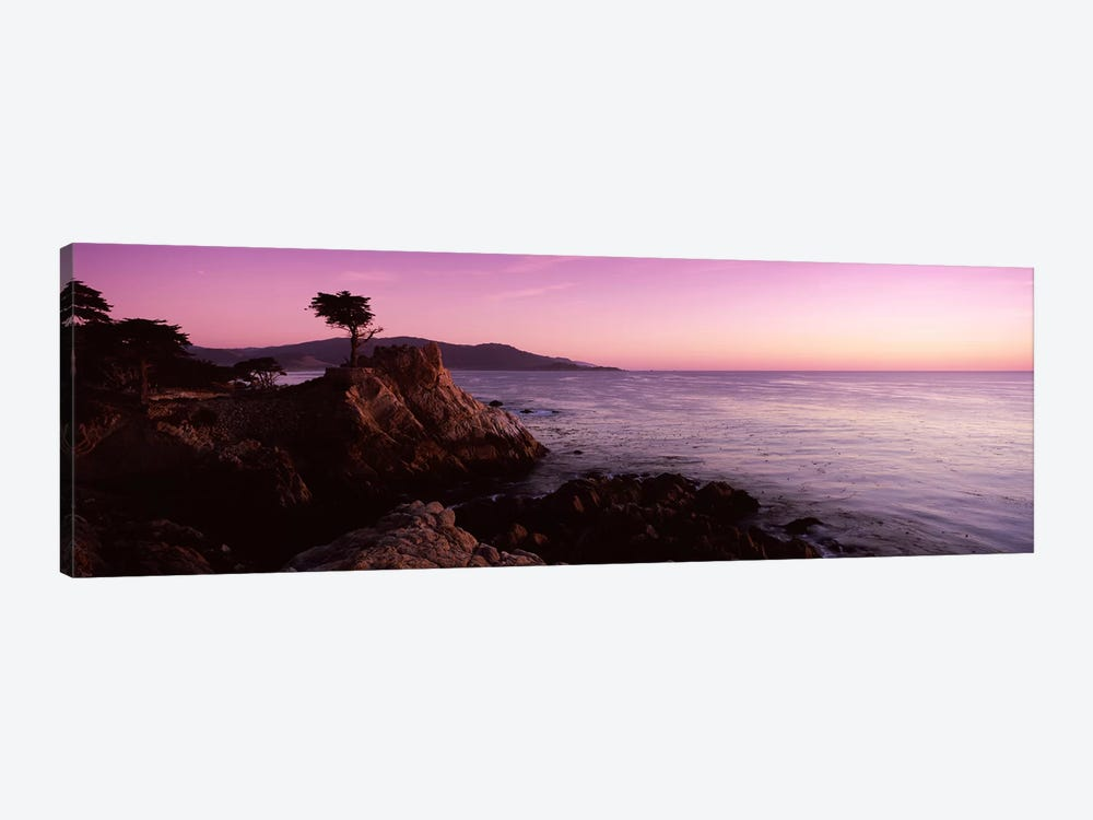 Coastal Landscape Featuring The Lone Cypress, Pebble Beach, Monterey County, California, USA by Panoramic Images 1-piece Canvas Artwork