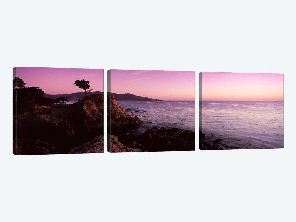 Coastal Landscape Featuring The Lone Cypress, Pebble Beach, Monterey County, California, USA by Panoramic Images 3-piece Canvas Artwork