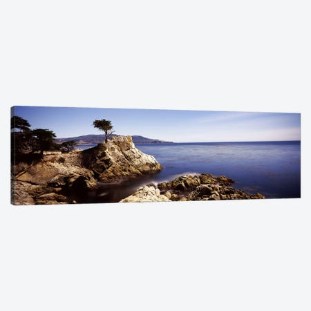 Lone Cypress, Pebble Beach, Monterey County, California, USA Canvas Print #PIM7585} by Panoramic Images Canvas Print