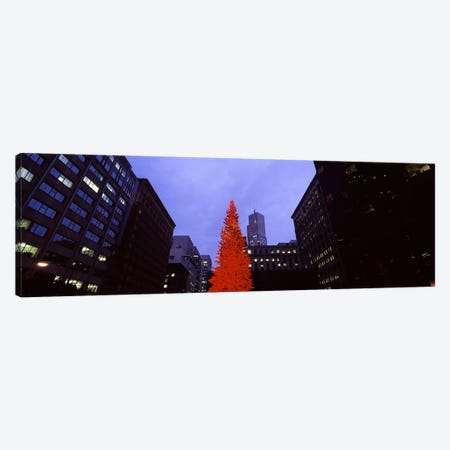Low angle view of a Christmas tree, San Francisco, California, USA Canvas Print #PIM7589} by Panoramic Images Canvas Artwork