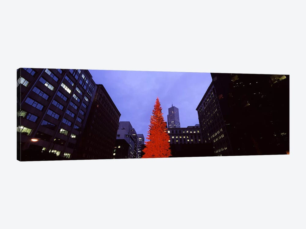 Low angle view of a Christmas tree, San Francisco, California, USA by Panoramic Images 1-piece Art Print