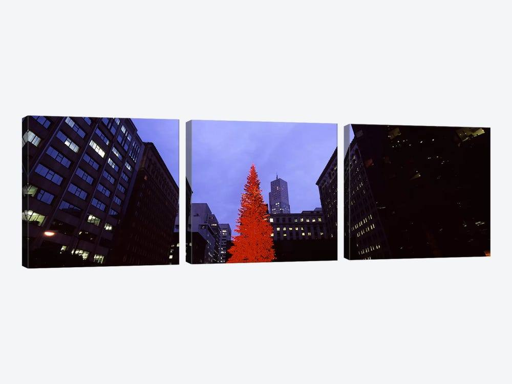 Low angle view of a Christmas tree, San Francisco, California, USA by Panoramic Images 3-piece Canvas Art Print
