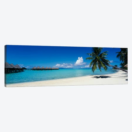 Tropical Landscape, Society Islands, French Polynesia Canvas Print #PIM775} by Panoramic Images Canvas Print