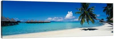 Tropical Landscape, Society Islands, French Polynesia Canvas Art Print