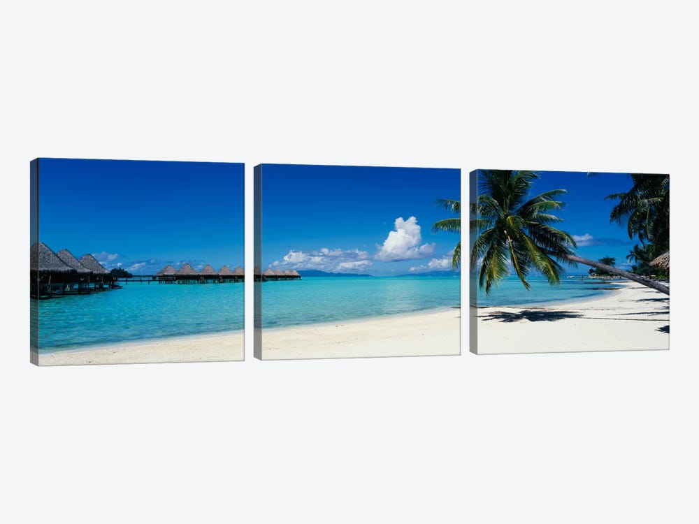 Tropical Landscape, Society Islands, French Polynesia by Panoramic Images 3-piece Art Print