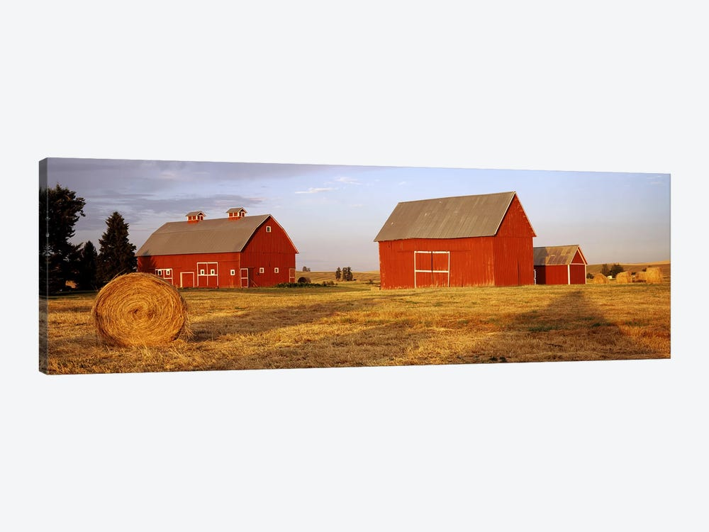 Red barns in a farm, Palouse, Whitman County, Washington State, USA by Panoramic Images 1-piece Canvas Artwork
