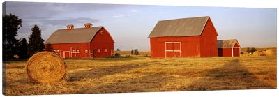 Red barns in a farm, Palouse, Whitman County, Washington State, USA Canvas Art Print