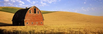Old barn in a wheat field, Palouse, Whitman County ...