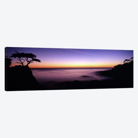 Majestic Coastal Landscape, 17-Mile Drive, Pebble Beach, Monterey County, California, USA Canvas Print #PIM7815} by Panoramic Images Canvas Art Print