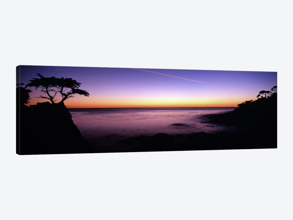 Majestic Coastal Landscape, 17-Mile Drive, Pebble Beach, Monterey County, California, USA by Panoramic Images 1-piece Art Print