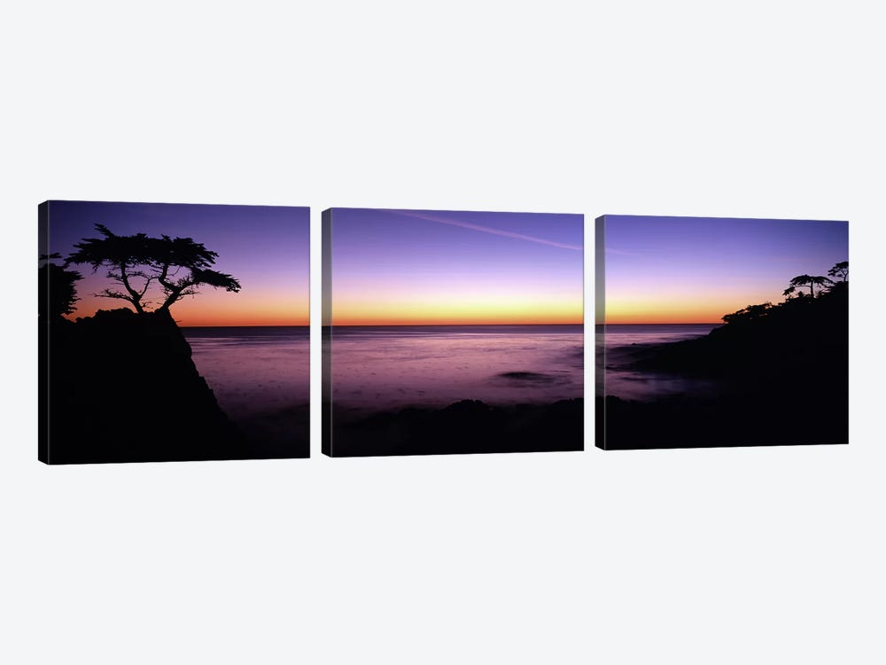 Majestic Coastal Landscape, 17-Mile Drive, Pebble Beach, Monterey County, California, USA by Panoramic Images 3-piece Art Print