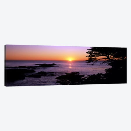 Sunset over the sea, Point Lobos State Reserve, Carmel, Monterey County, California, USA Canvas Print #PIM7817} by Panoramic Images Canvas Art Print
