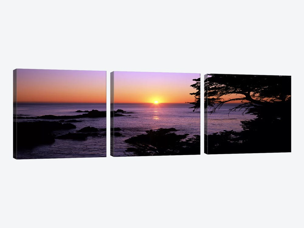 Sunset over the sea, Point Lobos State Reserve, Carmel, Monterey County, California, USA by Panoramic Images 3-piece Canvas Print