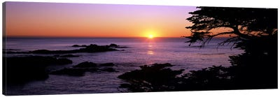 Sunset over the sea, Point Lobos State Reserve, Carmel, Monterey County, California, USA Canvas Art Print