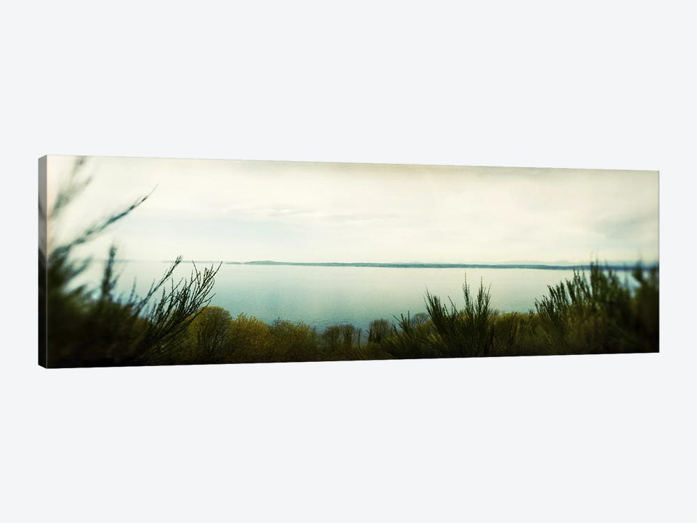 Park along an inlet, Puget Sound, Discovery Park, Magnolia, Seattle, Washington State, USA by Panoramic Images 1-piece Art Print