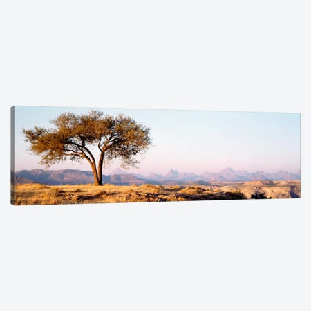 Lone Tree In An Arid Landscape, Mehakelegnaw, Tigray Region, Ethiopia Canvas Print #PIM794} by Panoramic Images Art Print