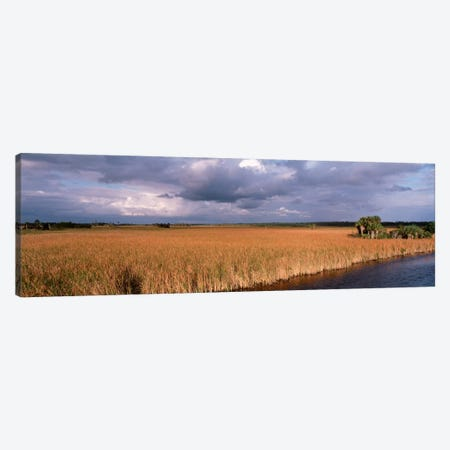 USAFlorida, Big Cypress National Preserve along Tamiami Trail Everglades National Park Canvas Print #PIM799} by Panoramic Images Canvas Art