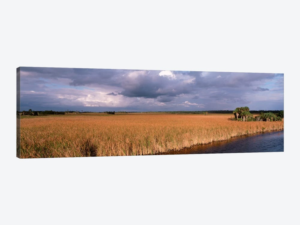 USAFlorida, Big Cypress National Preserve along Tamiami Trail Everglades National Park by Panoramic Images 1-piece Canvas Art Print