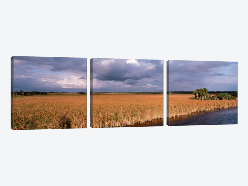 USAFlorida, Big Cypress National Preserve along Tamiami Trail Everglades National Park by Panoramic Images 3-piece Canvas Print
