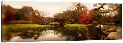 Pond in a park, Central Park, Manhattan, New York City, New York State, USA Canvas Art Print