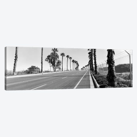 Palm trees along a roadSan Diego, California, USA Canvas Print #PIM8071} by Panoramic Images Canvas Artwork