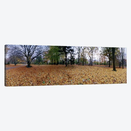 360 degree view of an urban park, Central Park, Manhattan, New York City, New York State, USA Canvas Print #PIM8105} by Panoramic Images Art Print