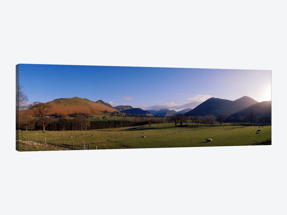 Valley Northern Lake District Cumbria Newlands England by Panoramic Images 1-piece Canvas Art