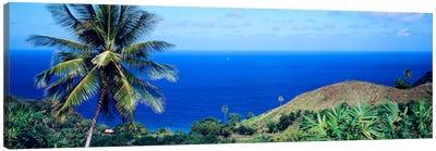 Pigeon Point Tobago Canvas Print #PIM816