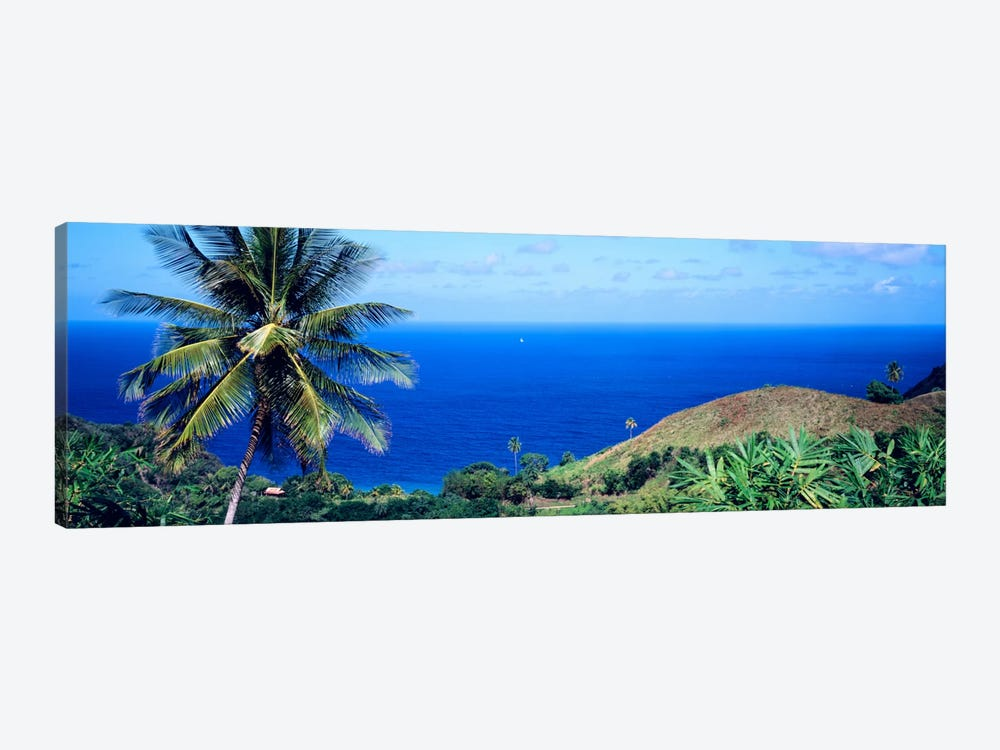 Pigeon Point Tobago by Panoramic Images 1-piece Canvas Wall Art